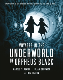 Voyages in the Underworld of Orpheus Black, Hardback Book