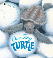 One Tiny Turtle, Paperback Book