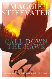 Call Down the Hawk, Paperback / softback Book