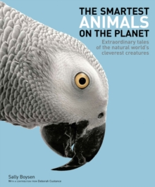 The Smartest Animals on the Planet : Extraordinary Tales of the Natural World's Cleverest Creatures, Paperback Book