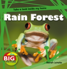 Rainforest, Paperback Book