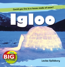 Igloo, Paperback Book
