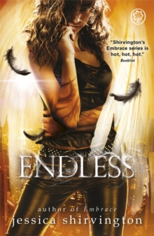 Embrace: Endless : Book 4, Paperback Book