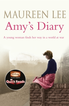 Amy's Diary, Paperback Book