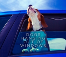 Dogs Hanging out of Windows, Hardback Book