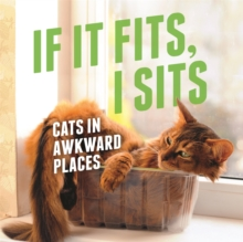 If It Fits, I Sits : Cats in Awkward Places, Hardback Book