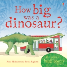 How Big Was a Dinosaur?, Hardback Book