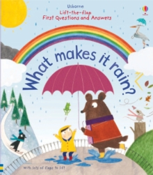 Lift-the-Flap First Questions and Answers What Makes it Rain?, Board book Book