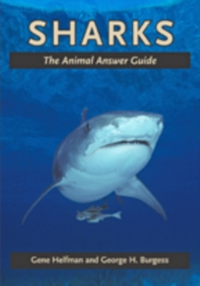 Sharks : The Animal Answer Guide