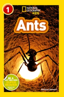National Geographic Kids Readers: Ants, Paperback Book