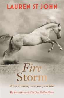 The One Dollar Horse: Fire Storm : Book 3, Paperback Book