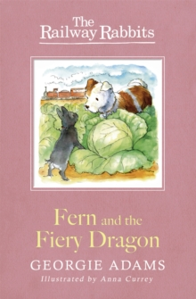 Fern and the Fiery Dragon : Book 7, Paperback Book
