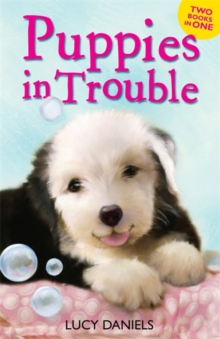 Animal Ark: Puppies in Trouble : Puppies in the Pantry & Puppy in a Puddle, Paperback Book