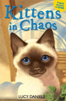 Animal Ark: Kittens in Chaos : Siamese in the Sun & Cat in the Candlelight, Paperback Book