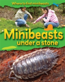 Where to Find Minibeasts: Minibeasts Under a Stone, Paperback Book