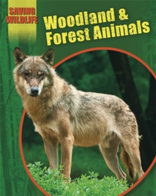 Saving Wildlife: Woodland and Forest Animals, Paperback Book