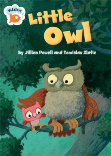 Tiddlers: Little Owl, Paperback Book