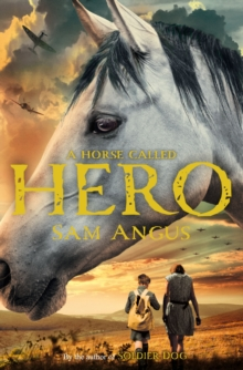 A Horse Called Hero, Paperback Book