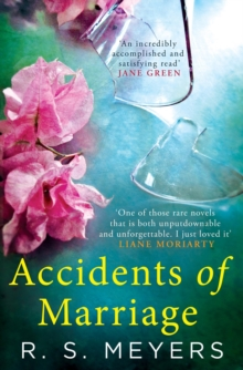 Accidents of Marriage, Paperback Book