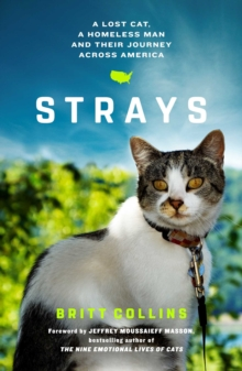 Strays : The True Story of a Lost Cat, a Homeless Man and Their Journey Across America, Paperback / softback Book