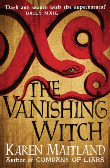 The Vanishing Witch, Paperback Book
