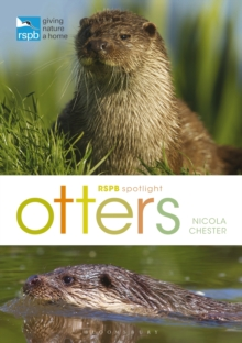 RSPB Spotlight: Otters, Paperback / softback Book