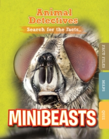 Minibeasts, Hardback Book