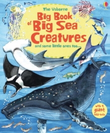 Big Book of Sea Creatures, Hardback Book