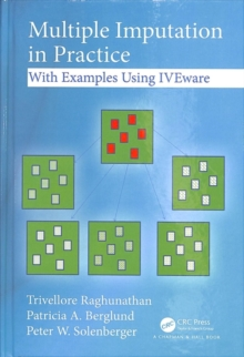 Multiple Imputation in Practice : With Examples Using IVEware, Hardback Book