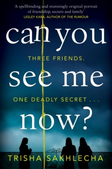 Can You See Me Now?, Paperback / softback Book