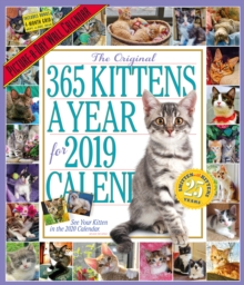 2019 365 Kittens a Year Picture-A-Day Wall Calendar, Calendar Book