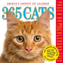 2019 365 Cats Colour Page-A-Day Calendar, Calendar Book