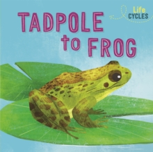 Life Cycles: From Tadpole to Frog
