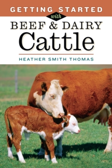 Getting Started with Beef and Dairy Cattle, Paperback Book