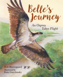 Belle's Journey, Hardback Book