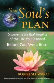 Your Soul's Plan, Paperback Book