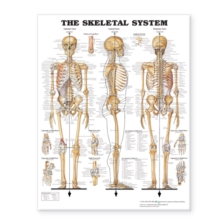 "The Skeletal System Giant Chart Laminated : 42"" x 62"" chart, Poster Book"