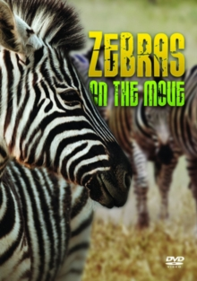 Zebras: On the Move, DVD  DVD