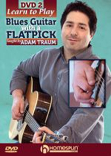 Learn to Play Blues Guitar With a Flatpick 2, DVD  DVD