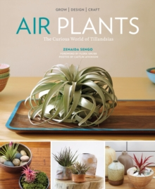 Air Plants: The Curious World of Tillandsias, Paperback / softback Book