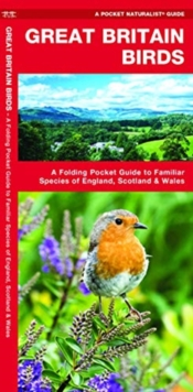 Great Britain Birds : A Folding Pocket Guide to Familiar Species of England, Scotland & Wales, Poster Book
