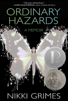 Ordinary Hazards : A Memoir
