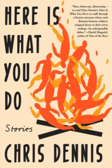 Here Is What You Do : Stories, Paperback / softback Book