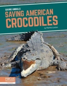 Saving Animals: Saving American Crocodiles