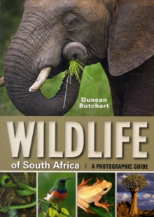 Wildlife of South Africa, Paperback Book