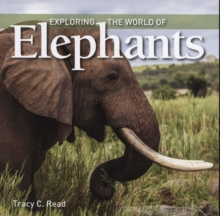 Exploring the World of Elephants, Paperback / softback Book
