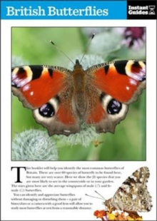 British Butterflies : The Instant Guide, Paperback / softback Book