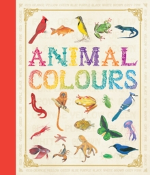 First Concept: Animal Colours, Hardback Book