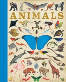 Animals, Hardback Book