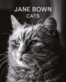 Jane Bown: Cats, Hardback Book